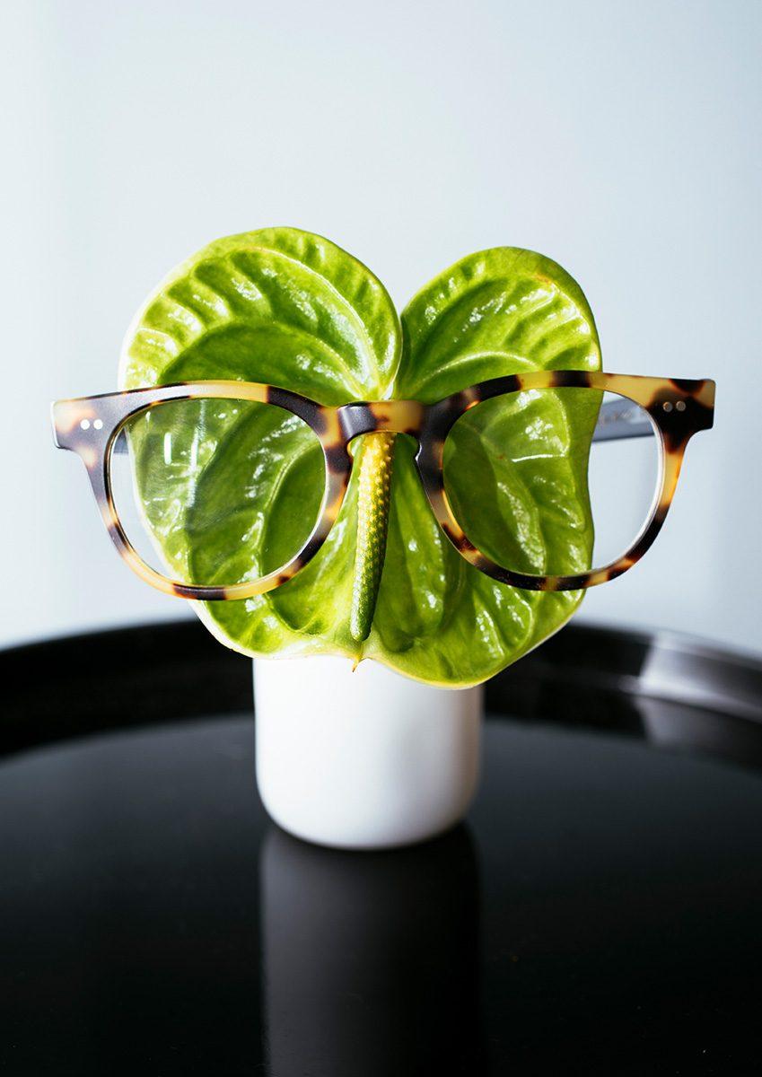 Print - Anthurium Araceae